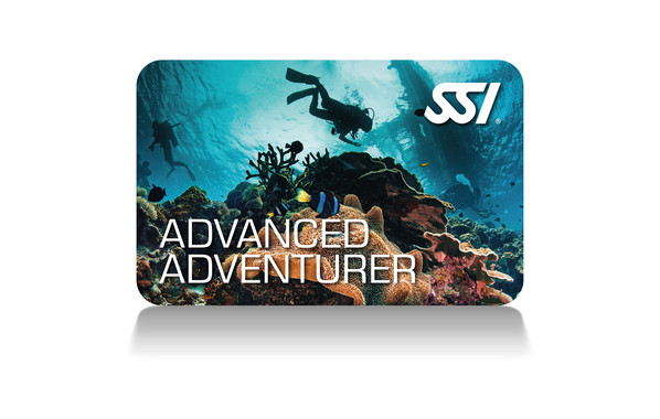SSI - Advanced Adventurer