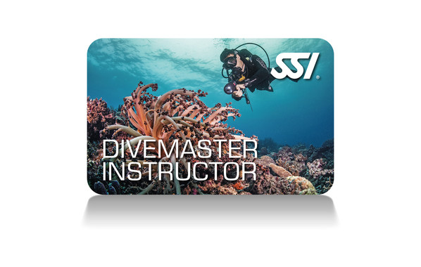 SSI - Divemaster Instructor Course