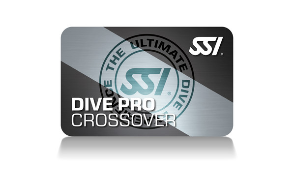 SSI - Instructor Crossover