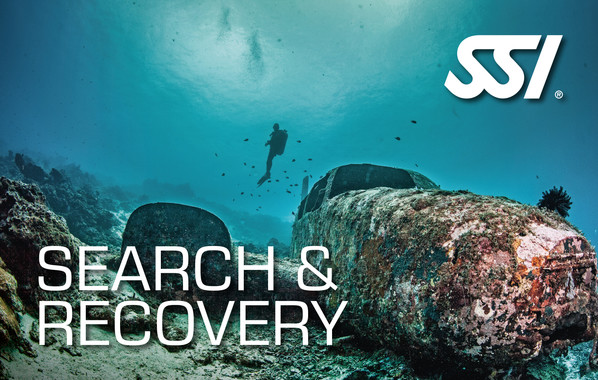 SSI - Search and Recovery