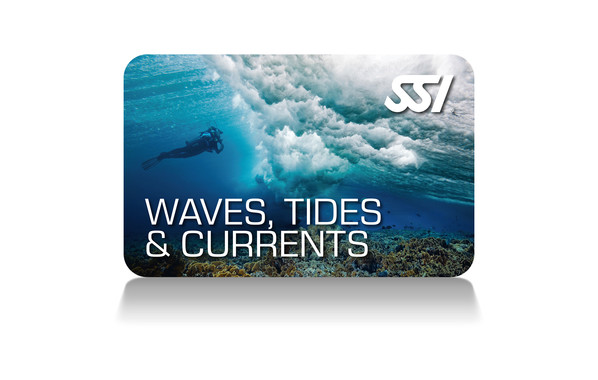 SSI - Waves, Tides & Currents